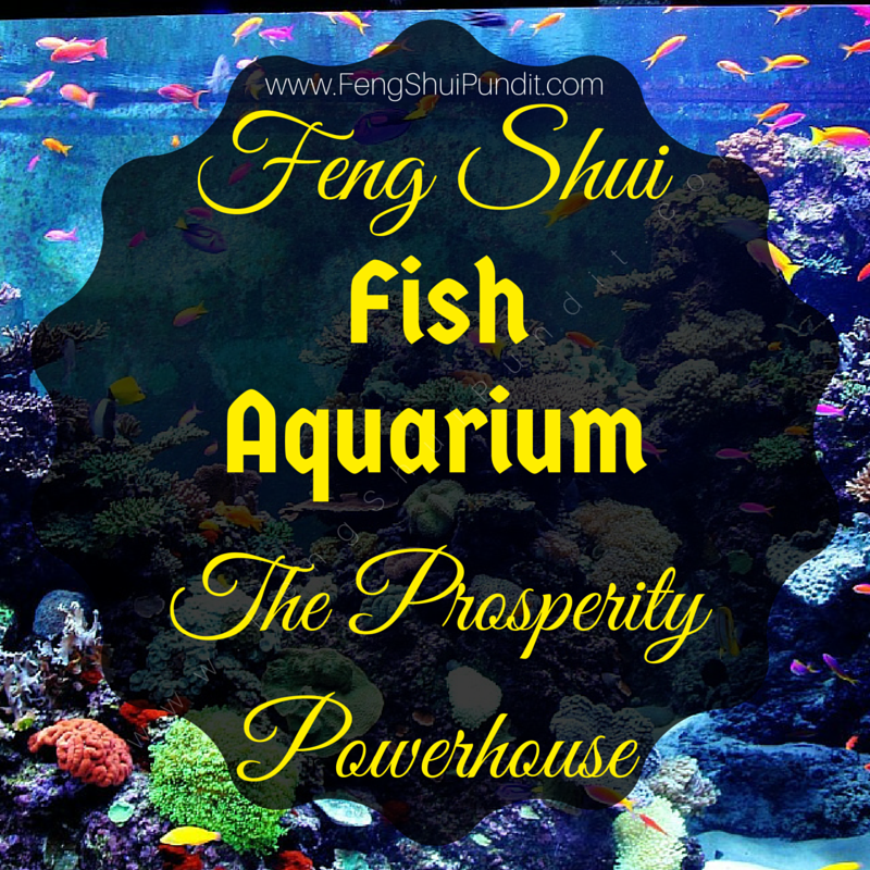Aquarium Feng Shui Living Room peenmediacom